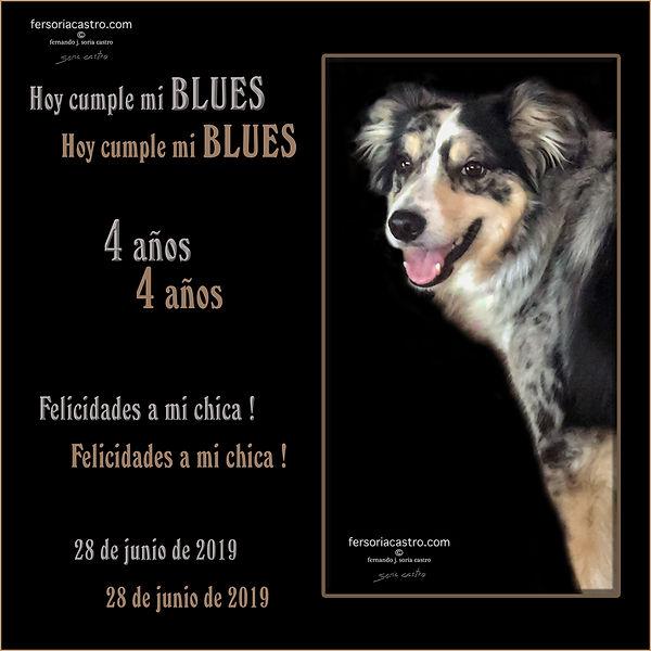 FELICIDADES, BLUES 2019