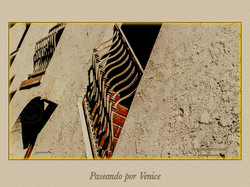 VENICE 037
