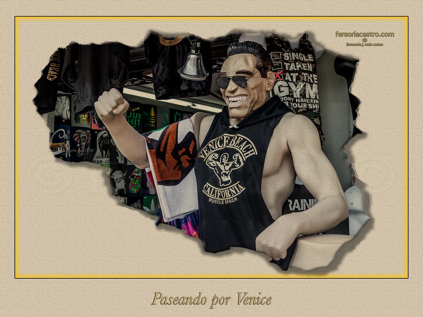 VENICE 112