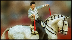 web caballos 11