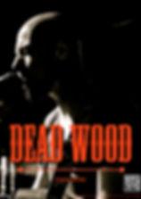 Calvin Coal musicien professionnel lyon Dead Wood