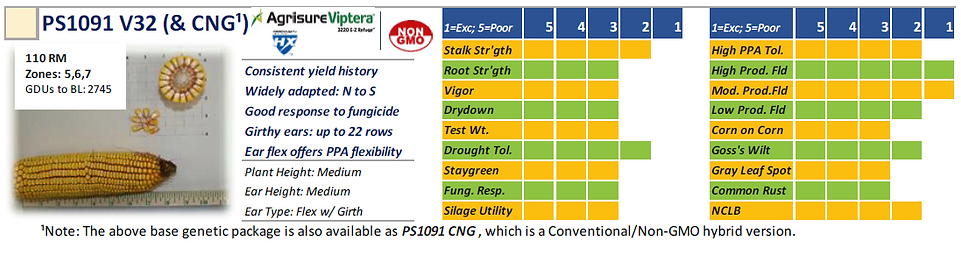PS1091 V32 & CNG.PNG