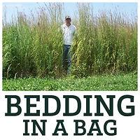 Bedding in a Bag.jpg