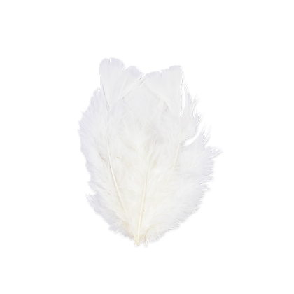 18 Plumes Blanches