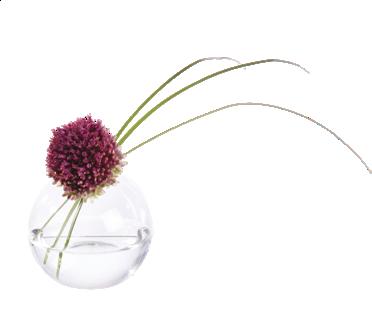 Sphère en verre