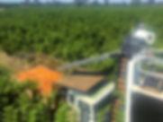 IMG_2832_edited_edited.jpg