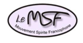 logo msf.PNG