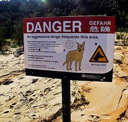 danger-sign2_edited