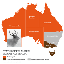 feral-deer-map-700-exp