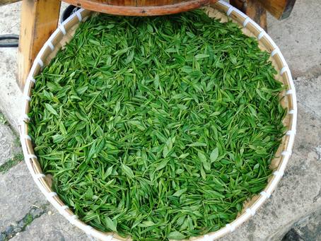Comment faire un thé vert ?