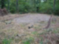Chasse de la palombe au filet