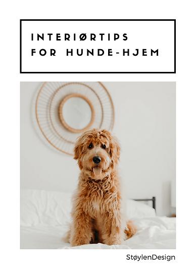 Interiørtips for hunde-hjem