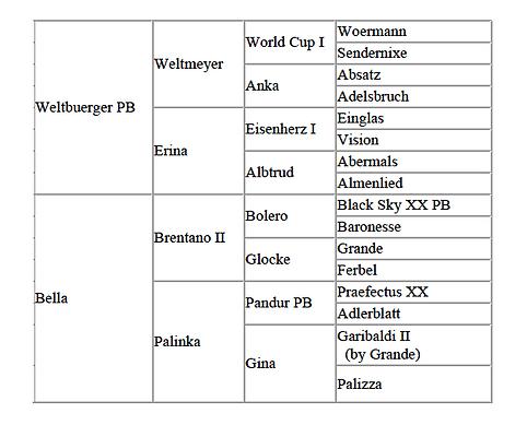 WW pedigree