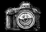 80493671-bosquejo-dibujado-mano-del-vect