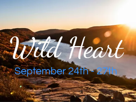 Introducing... Wild Heart!