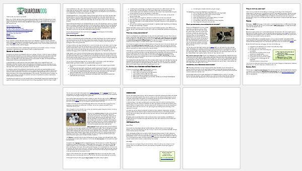 Document creation.jpg