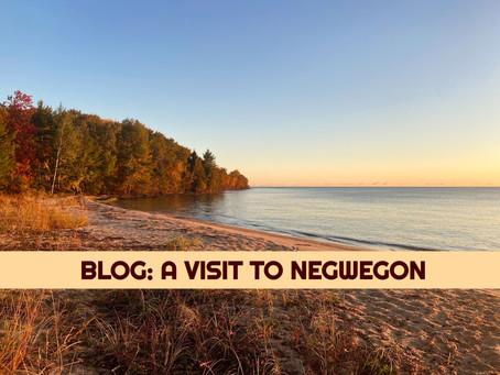 A Visit to Negwegon