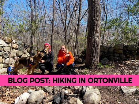 Hiking in Ortonville