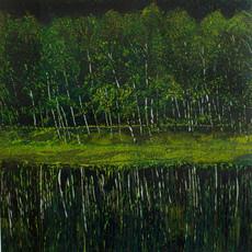 White Birch Forest
