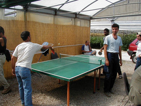A little ping-pong before lunch