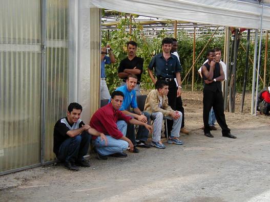 Refugee men of l'Orto