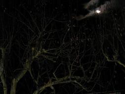Moonlite night in Slovenia