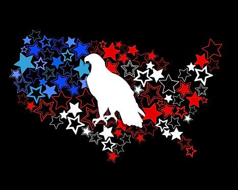 Patriotic Eagle Print