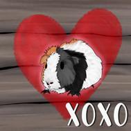 rustic guinea pig valentine flat1.jpg