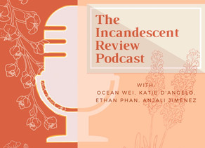 The IR Podcast: 1. COVID - 19 and Mental Wellness