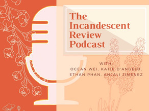 The IR Podcast 5: Police Brutality and Systemic Racism