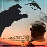 man%20in%20the%20air%20poster_edited.jpg