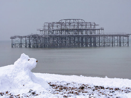 Snow Dog and West Pier, Brighton