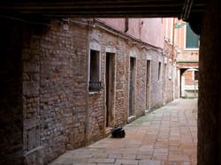 Venice - 191