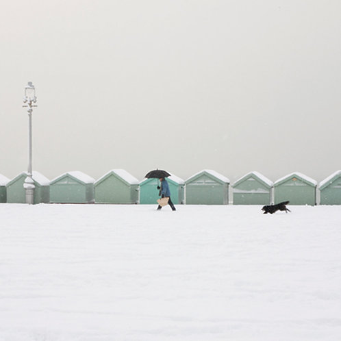 Walkies in the Snow, Hove - Square Card