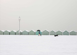 Walkies in the Snow, Hove