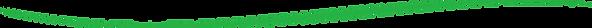grüner Strich_2.png