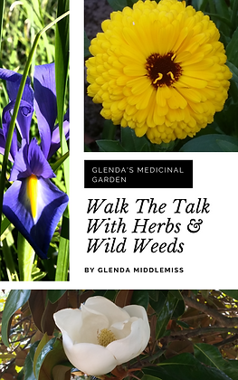 Walk The Talk with Herbs & Wild Weeds
