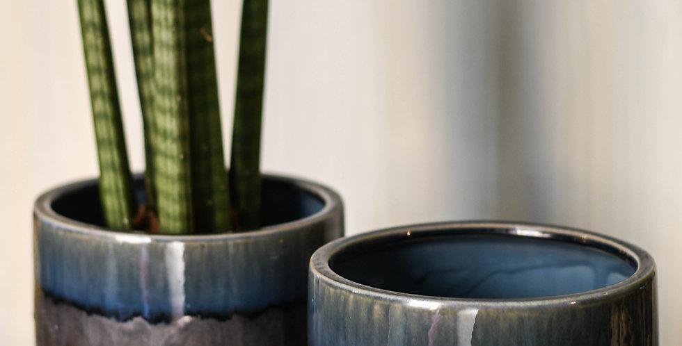 Pianta in vasodi ceramica