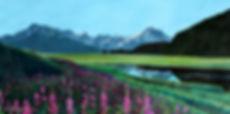fireweed summer.jpg