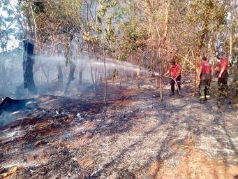 SAAE e usina dominam fogo em pastagem perto do Mais Parque e Batista Ananias