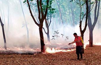 Bombeiros municipais combateram mais dois incêndios em Barretos