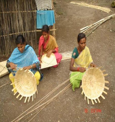 DPR-Tilakwada-Bamboo Cluster