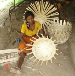 DPR Tilakwada-Bamboo Cluster_Gujarat2