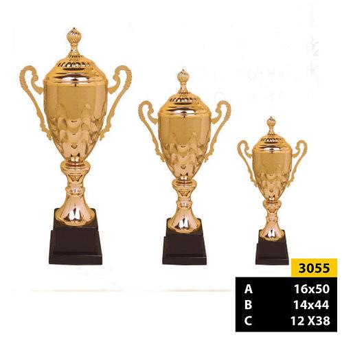 Copa Italiana 3055