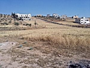 ارض للبيع في احد/ البيضاء - قرب مسجد مصيبيح المساعيد