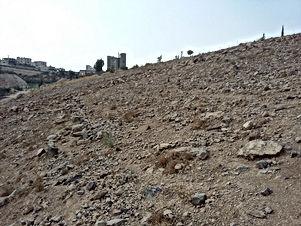 ارض للبيع في جريبا/ حي الرشيد - قرب مسجد العويسات
