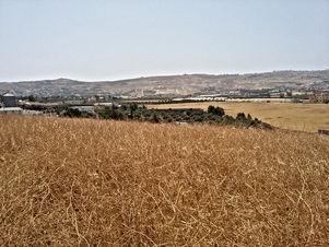 ارض للبيع في موبص - تبعد 750م عن تقاطع شارع عمان جرش مع شارع الاردن