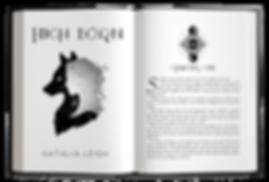 high born Mockup copy.png