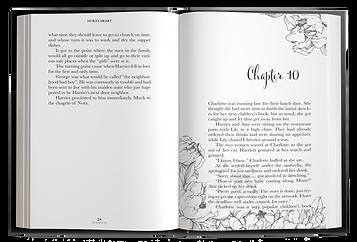 Kristy Walker Chapter 10 Mock up.png