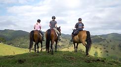 Sandy Bay Horse Trails